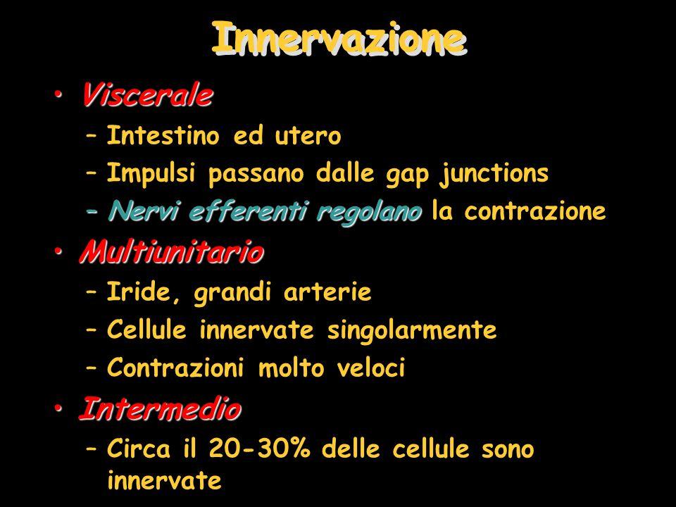 Innervazione Viscerale Multiunitario Intermedio Intestino ed utero