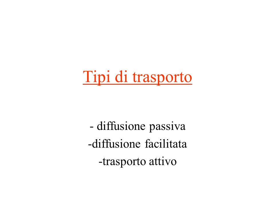 - diffusione passiva -diffusione facilitata -trasporto attivo