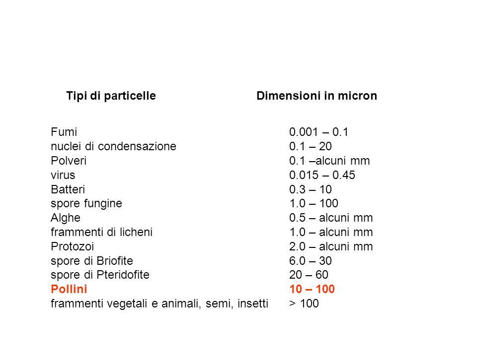 Tipi di particelle Dimensioni in micron