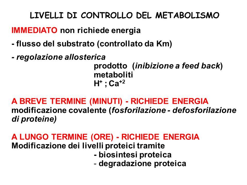 LIVELLI DI CONTROLLO DEL METABOLISMO