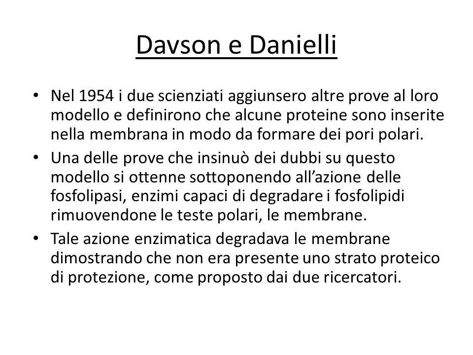 Davson e Danielli