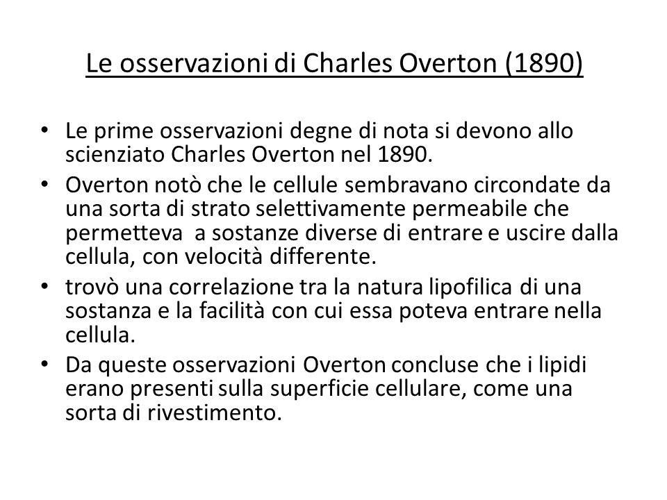 Le osservazioni di Charles Overton (1890)