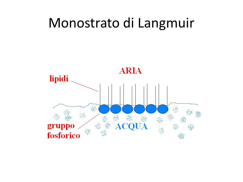 Monostrato di Langmuir