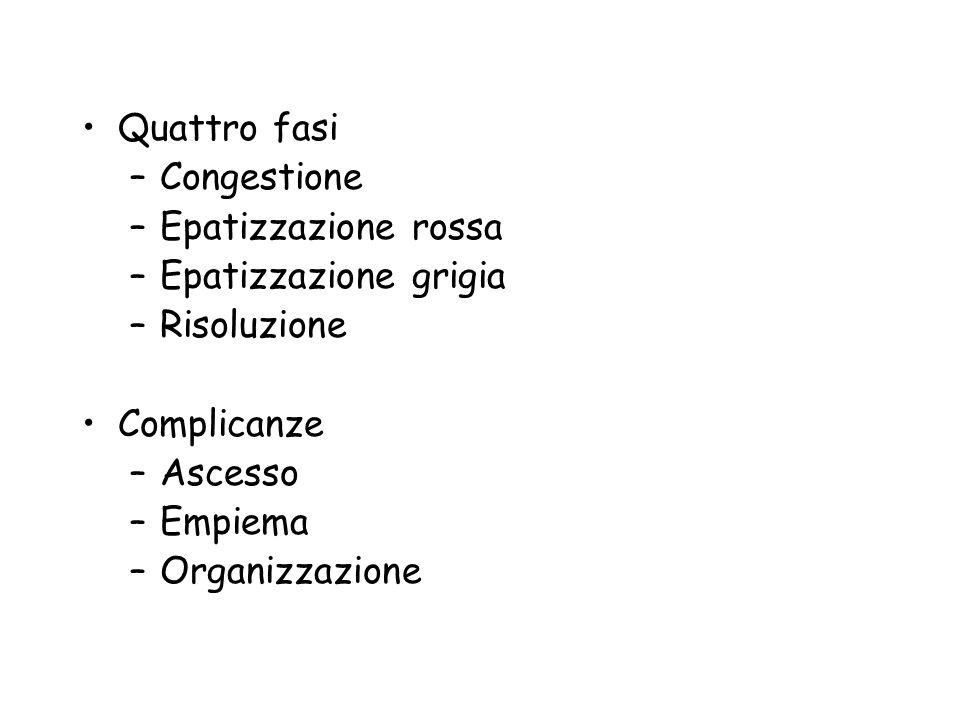 Quattro fasi Congestione. Epatizzazione rossa. Epatizzazione grigia. Risoluzione. Complicanze. Ascesso.