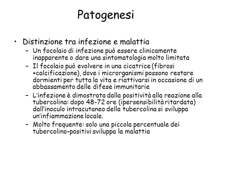 Patogenesi Distinzione tra infezione e malattia