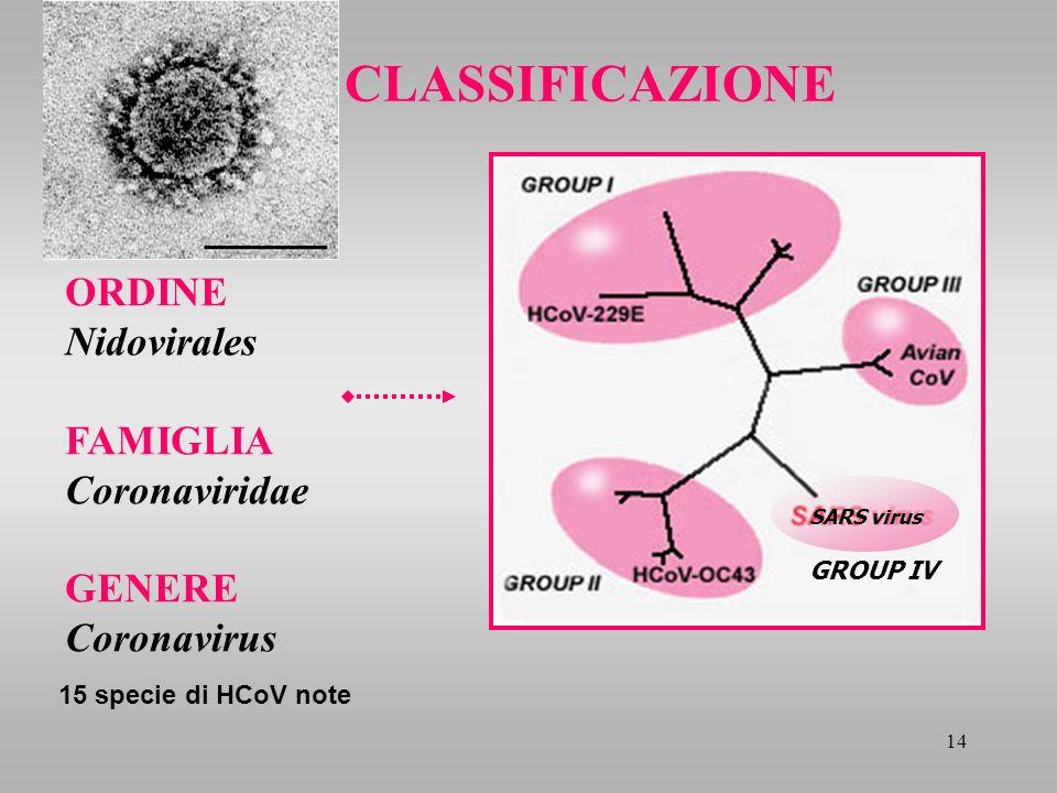 CLASSIFICAZIONE ORDINE Nidovirales FAMIGLIA Coronaviridae