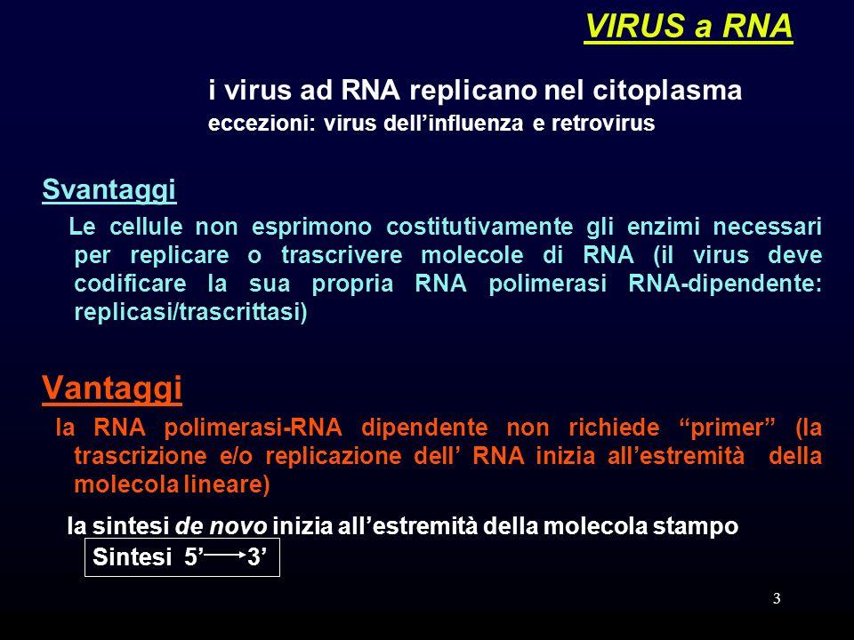 VIRUS a RNA Vantaggi i virus ad RNA replicano nel citoplasma Svantaggi