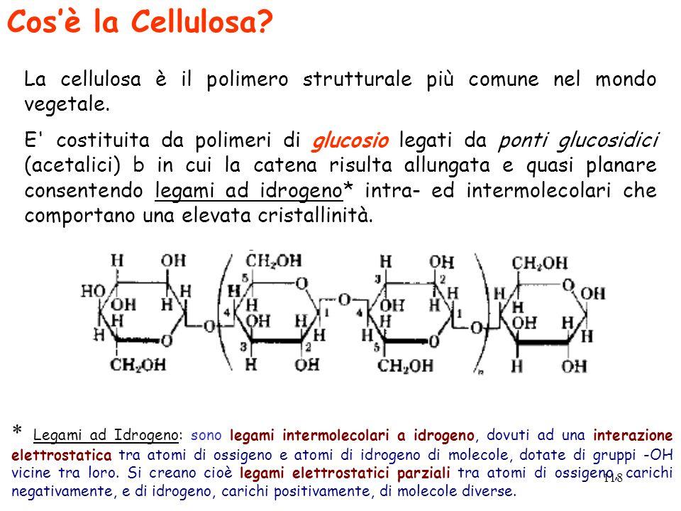 Cos'è la Cellulosa La cellulosa è il polimero strutturale più comune nel mondo vegetale.