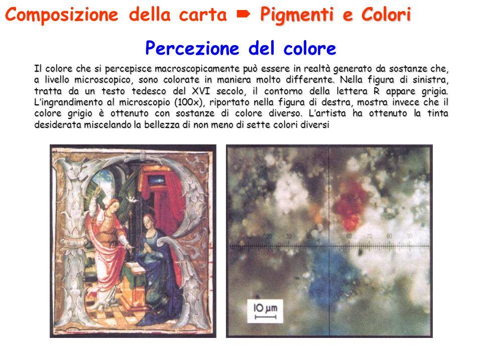 Composizione della carta  Pigmenti e Colori