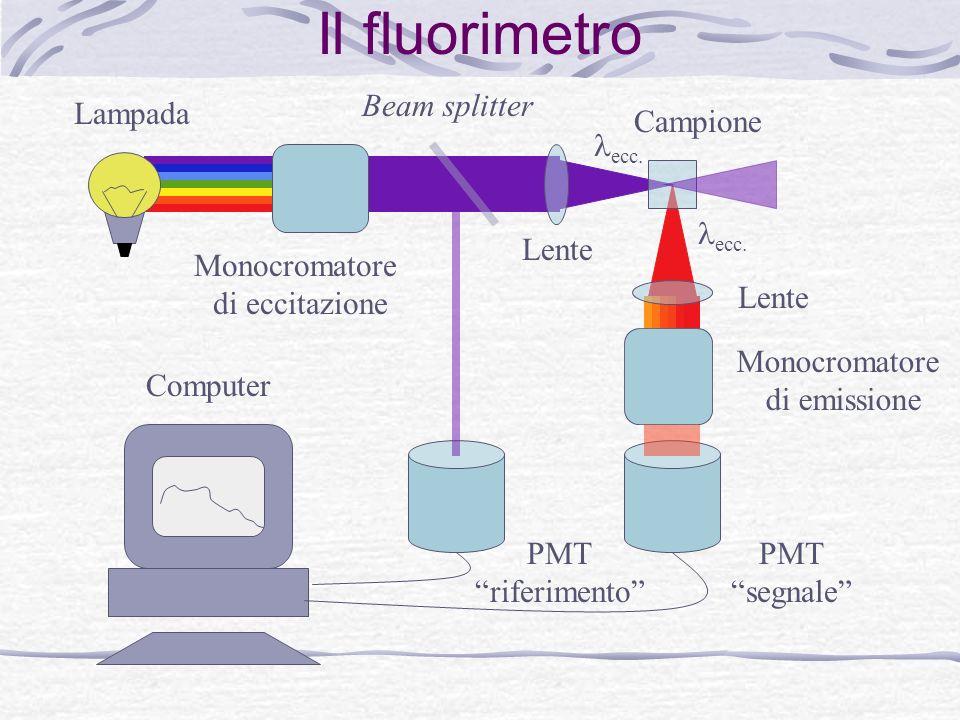Il fluorimetro Beam splitter Lampada Campione lecc. lecc. Lente