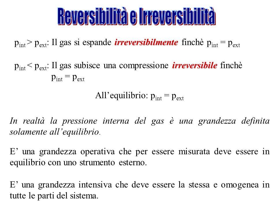 Reversibilità e Irreversibilità