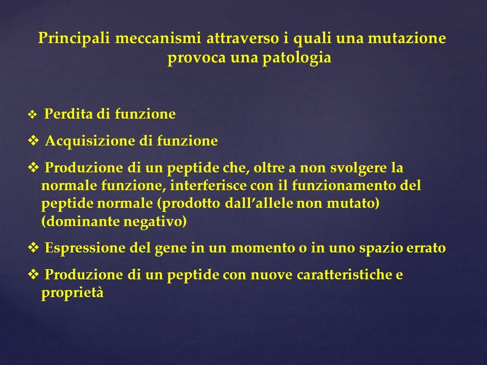 Principali meccanismi attraverso i quali una mutazione provoca una patologia