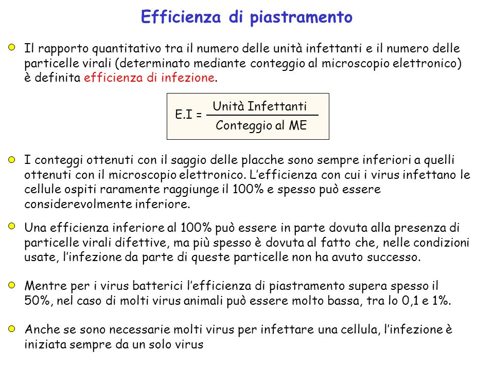 Efficienza di piastramento