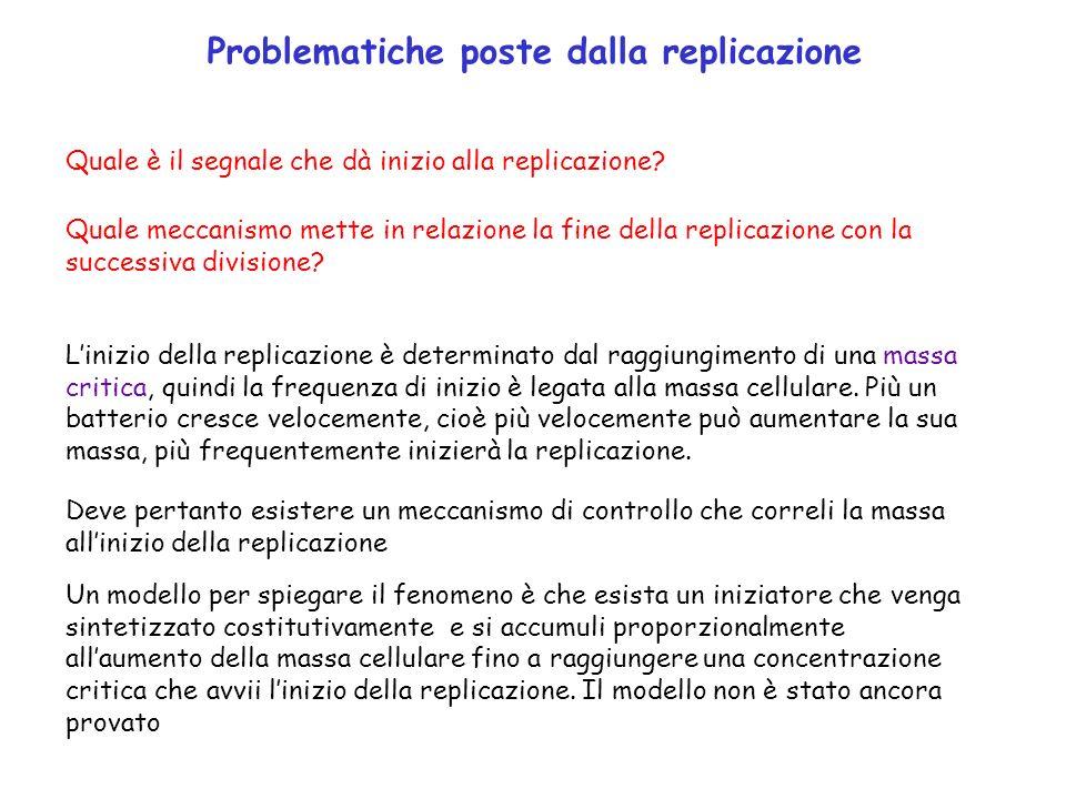Problematiche poste dalla replicazione