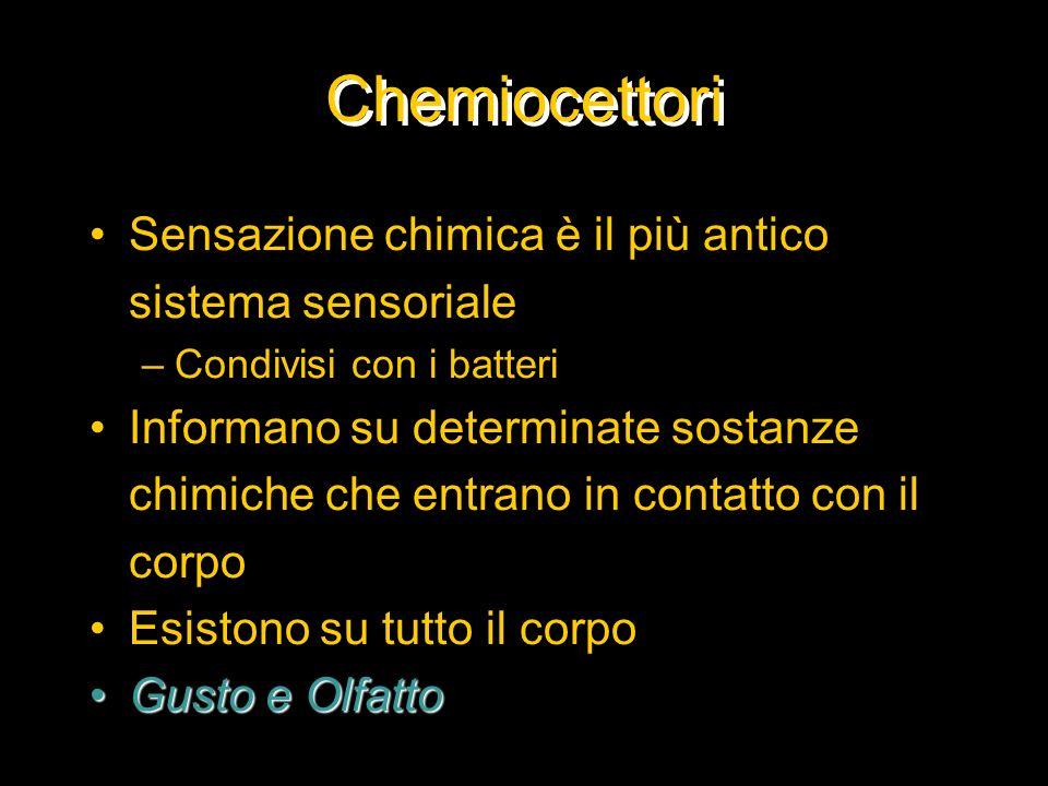 Chemiocettori Sensazione chimica è il più antico sistema sensoriale