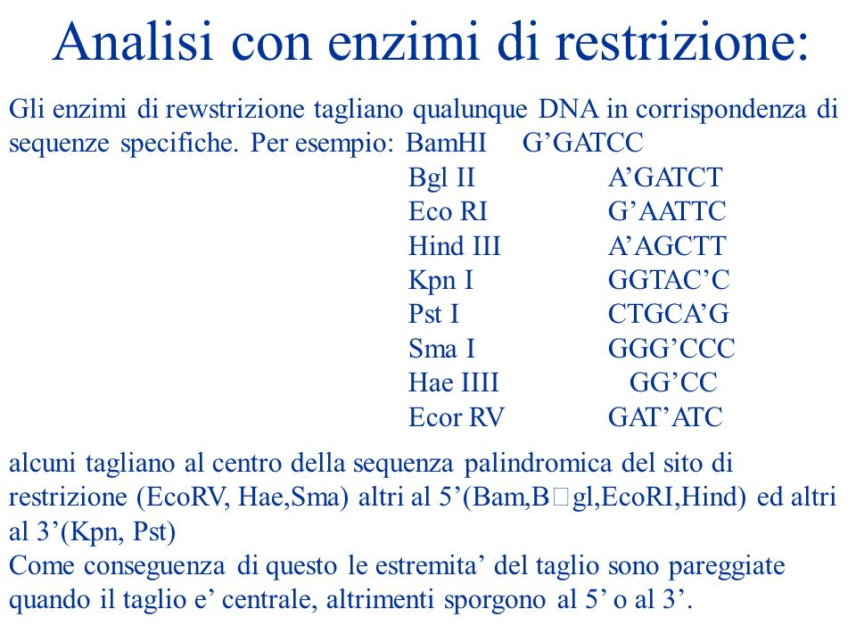 Analisi con enzimi di restrizione: