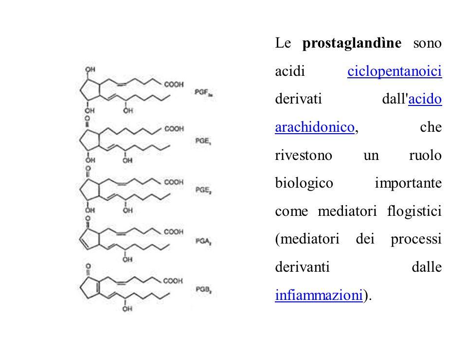 Le prostaglandìne sono acidi ciclopentanoici derivati dall acido arachidonico, che rivestono un ruolo biologico importante come mediatori flogistici (mediatori dei processi derivanti dalle infiammazioni).