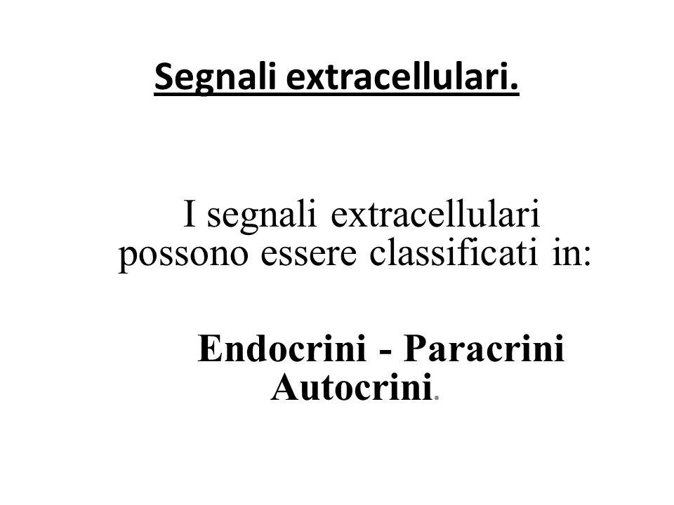 Segnali extracellulari.