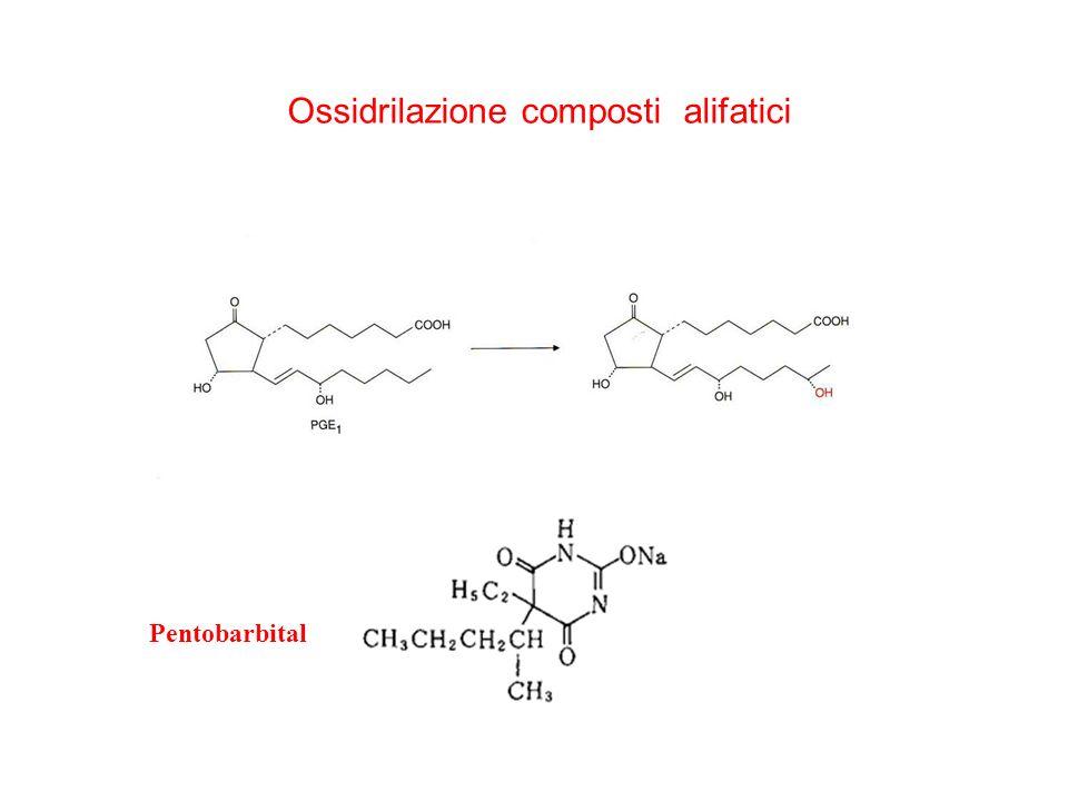 Ossidrilazione composti alifatici