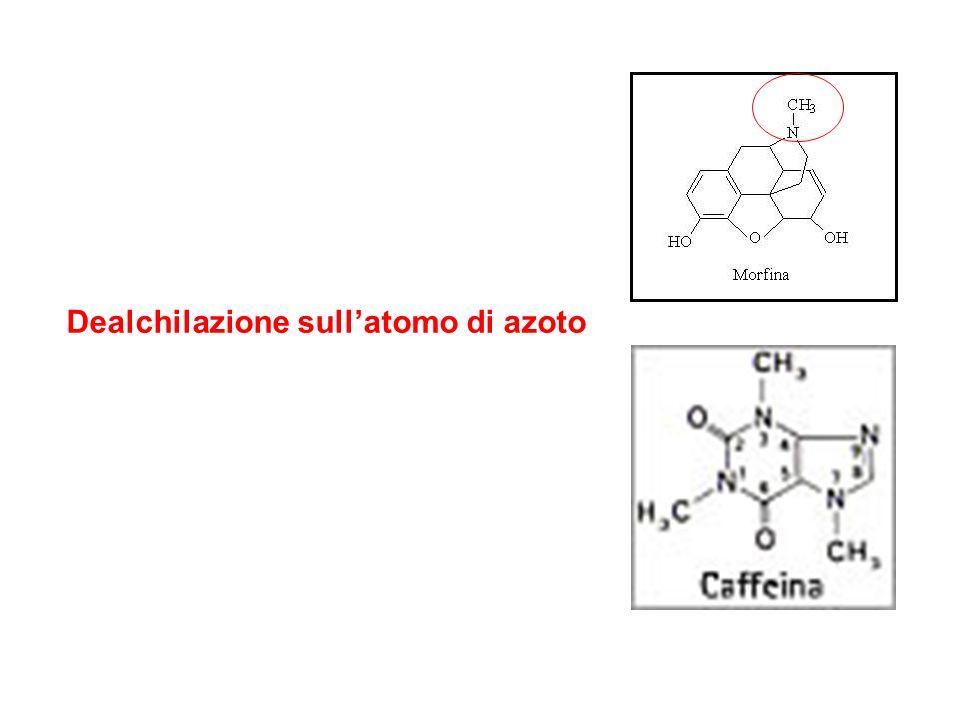 Dealchilazione sull'atomo di azoto