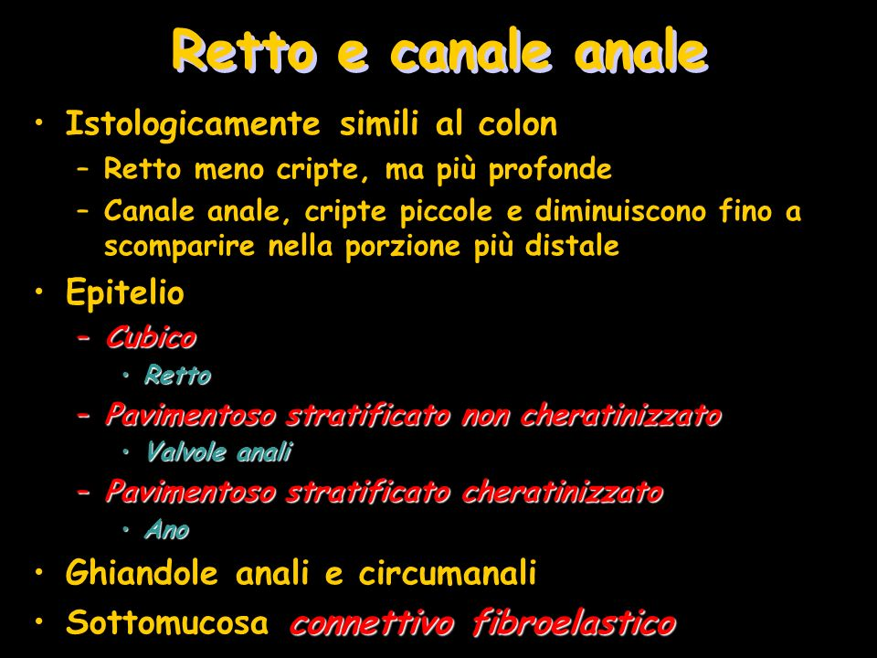 Retto e canale anale Istologicamente simili al colon Epitelio