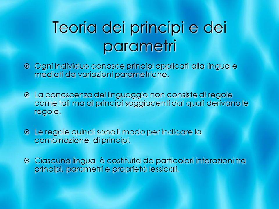 Teoria dei principi e dei parametri