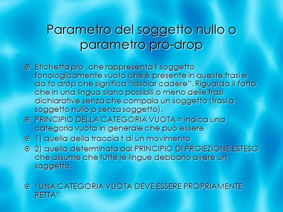 Parametro del soggetto nullo o parametro pro-drop