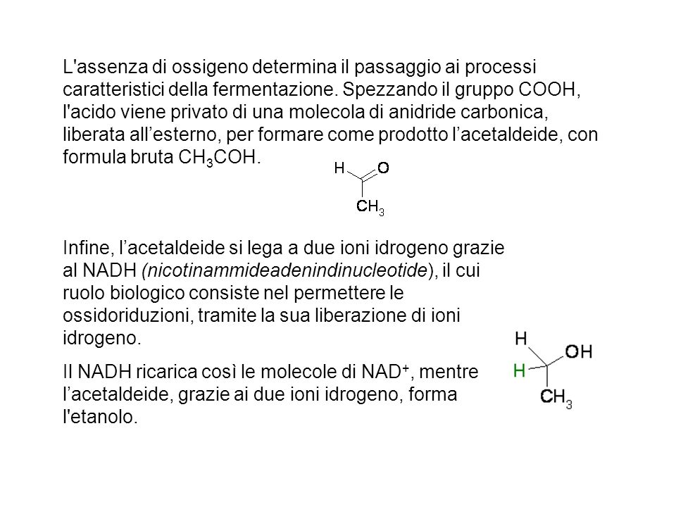 L assenza di ossigeno determina il passaggio ai processi caratteristici della fermentazione. Spezzando il gruppo COOH, l acido viene privato di una molecola di anidride carbonica, liberata all'esterno, per formare come prodotto l'acetaldeide, con formula bruta CH3COH.