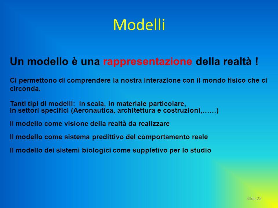 Modelli Un modello è una rappresentazione della realtà !