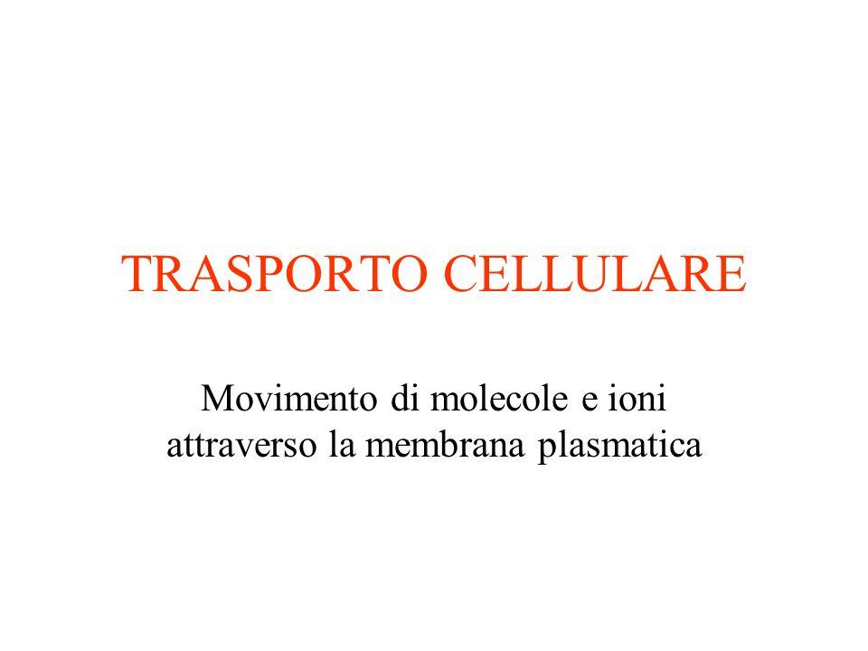 Movimento di molecole e ioni attraverso la membrana plasmatica