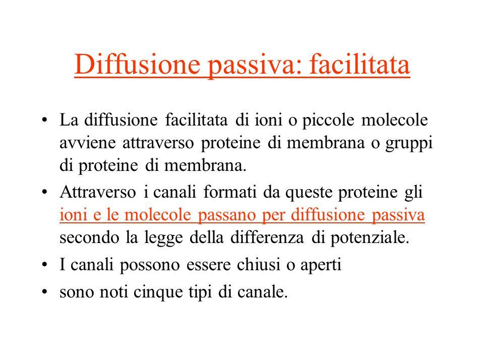 Diffusione passiva: facilitata