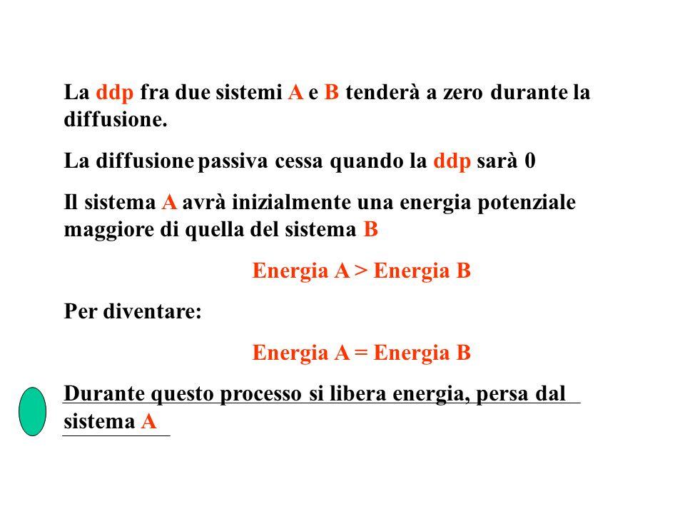 La ddp fra due sistemi A e B tenderà a zero durante la diffusione.