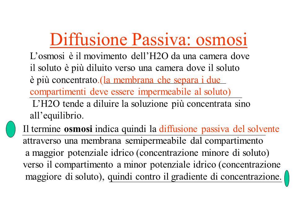 Diffusione Passiva: osmosi