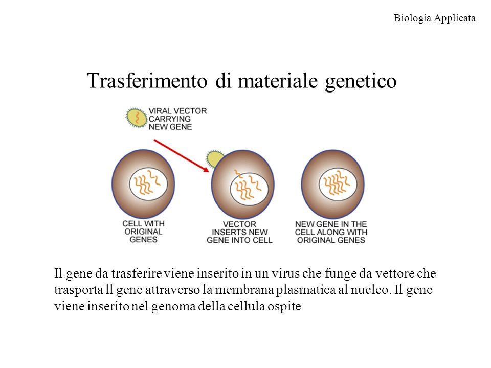 Trasferimento di materiale genetico