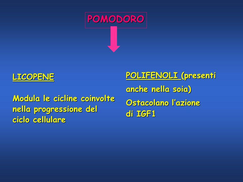 POMODORO POLIFENOLI (presenti LICOPENE anche nella soia)