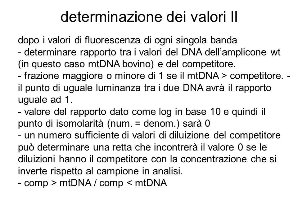 determinazione dei valori II