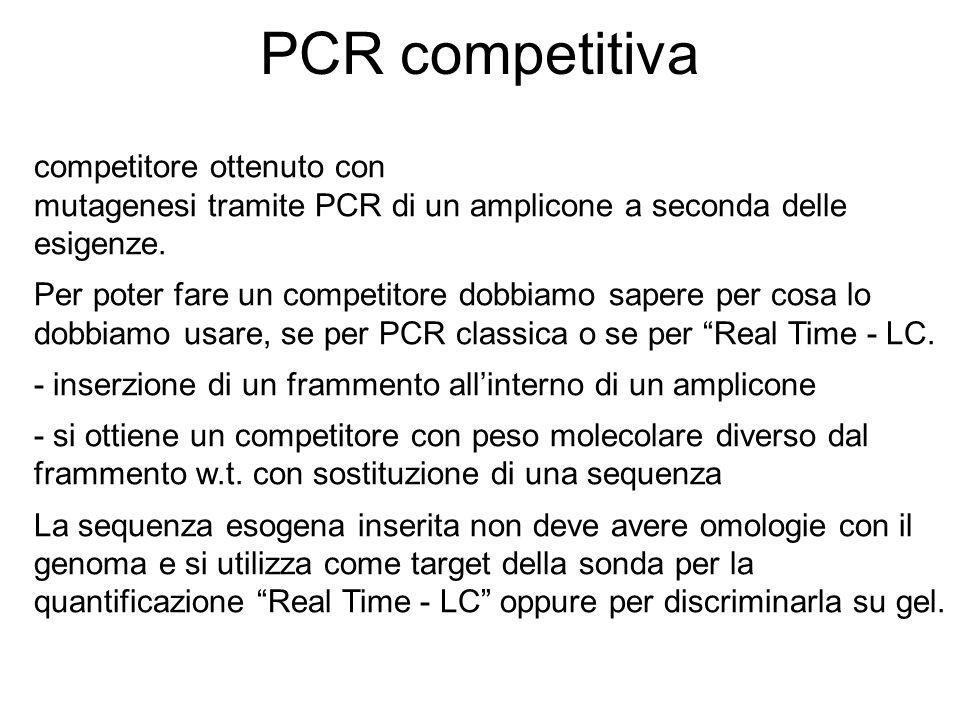 PCR competitiva competitore ottenuto con