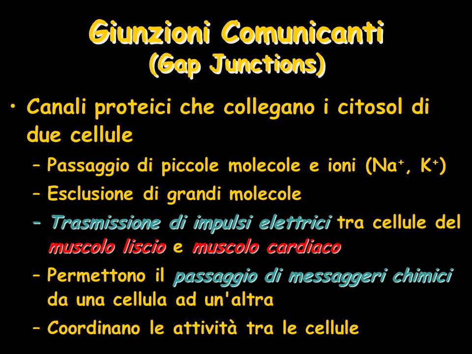 Giunzioni Comunicanti (Gap Junctions)