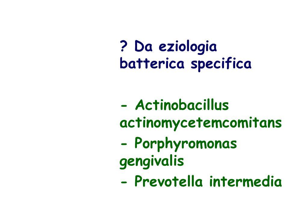 Da eziologia batterica specifica - Actinobacillus actinomycetemcomitans - Porphyromonas gengivalis - Prevotella intermedia