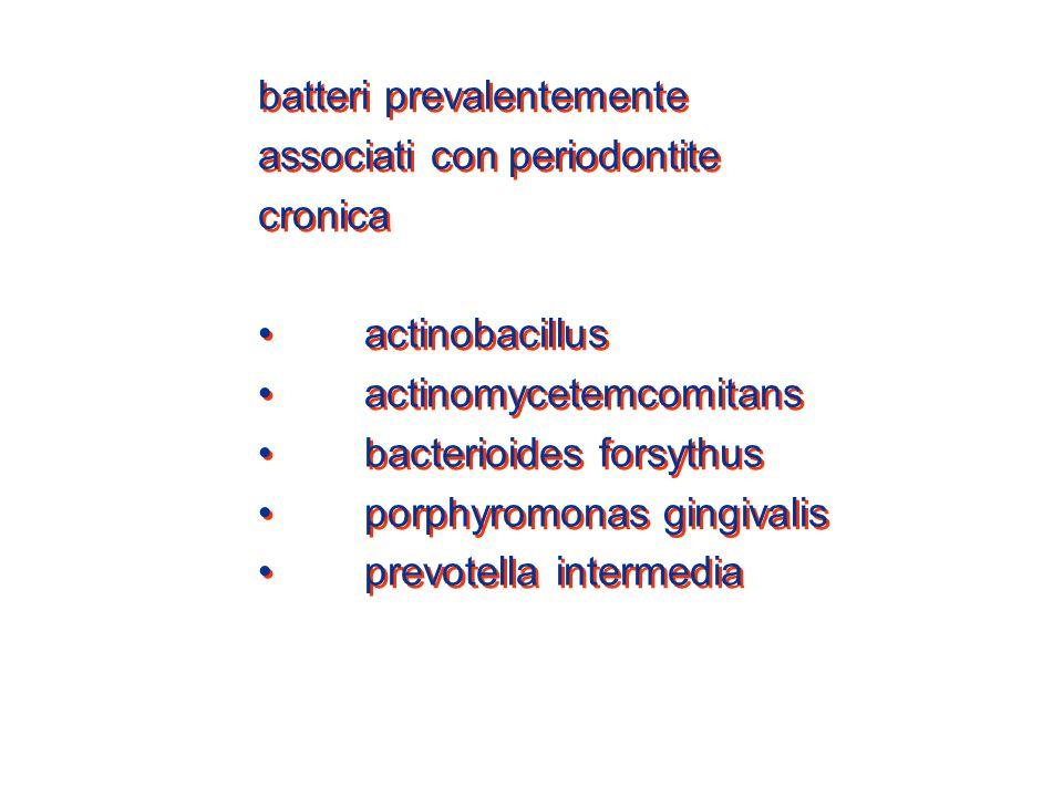 batteri prevalentemente
