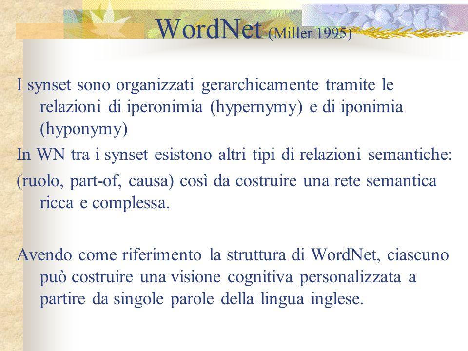 WordNet (Miller 1995) I synset sono organizzati gerarchicamente tramite le relazioni di iperonimia (hypernymy) e di iponimia (hyponymy)