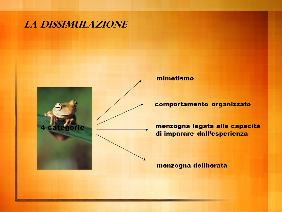 La dissimulazione 4 categorie mimetismo comportamento organizzato