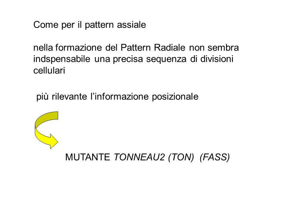 Come per il pattern assiale