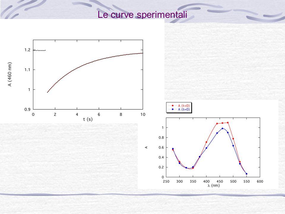 Le curve sperimentali