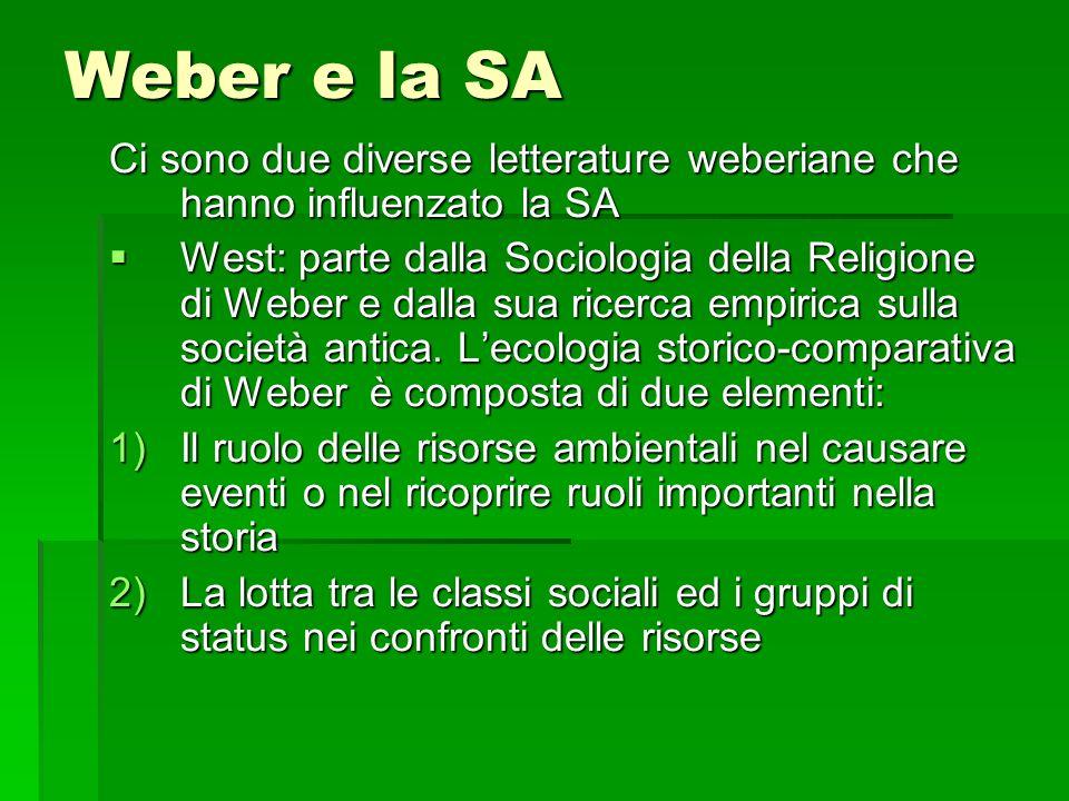 Weber e la SA Ci sono due diverse letterature weberiane che hanno influenzato la SA.