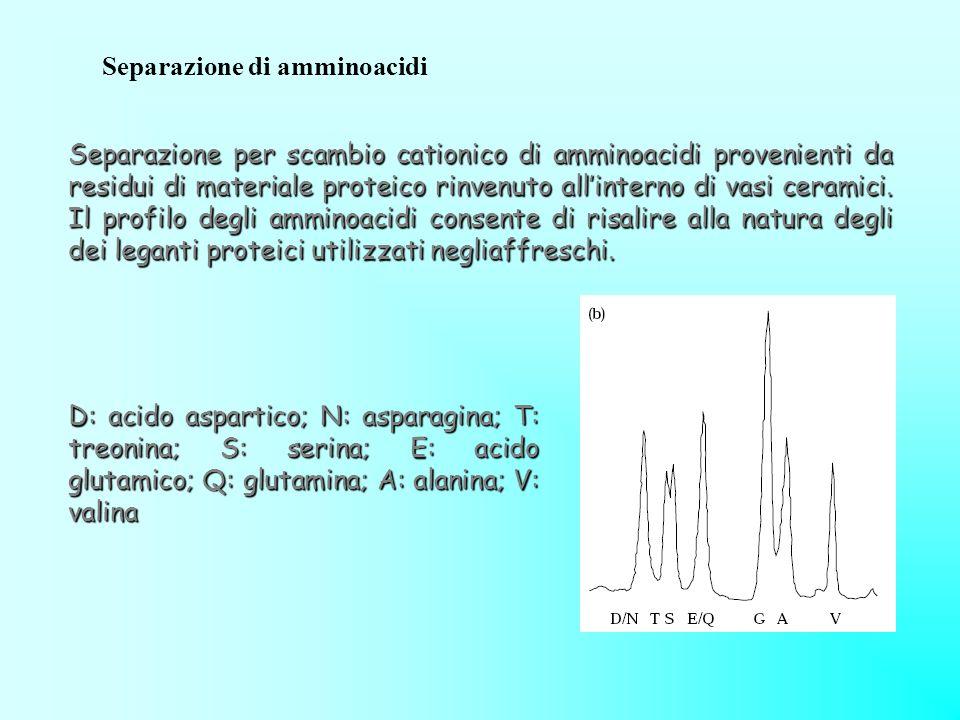 Separazione di amminoacidi
