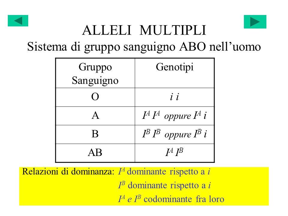 ALLELI MULTIPLI Sistema di gruppo sanguigno ABO nell'uomo