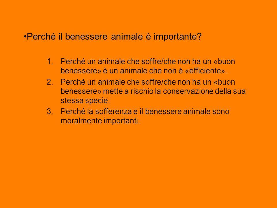 Perché il benessere animale è importante