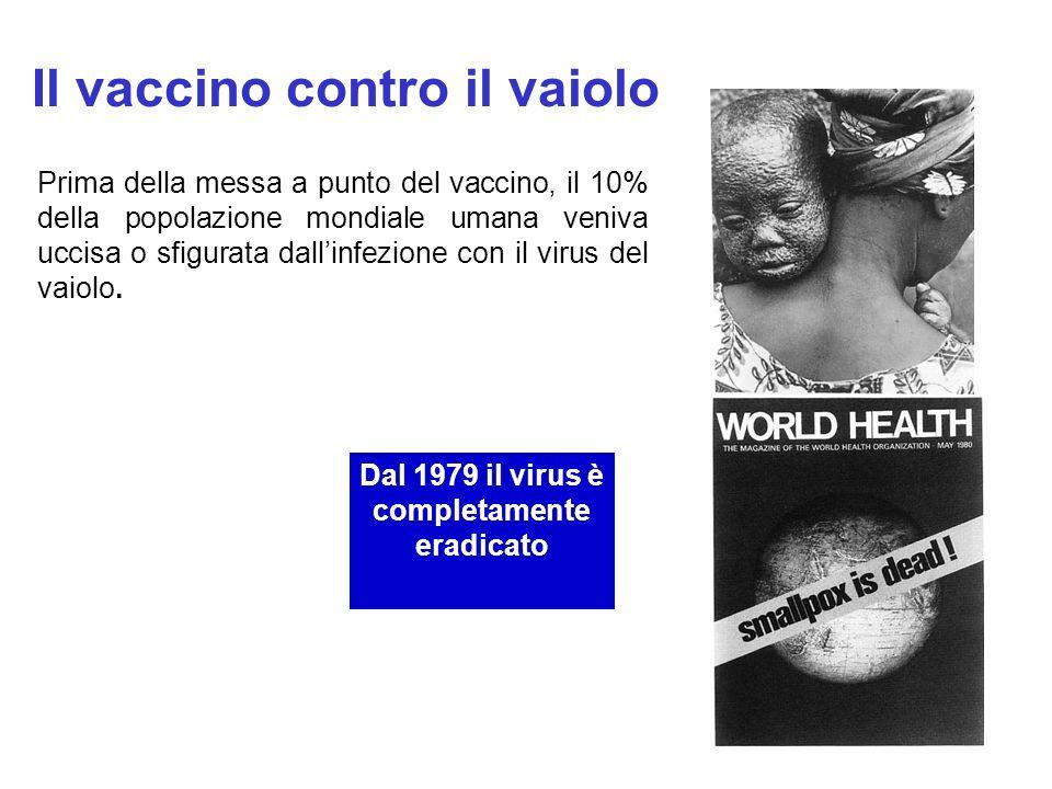 Il vaccino contro il vaiolo