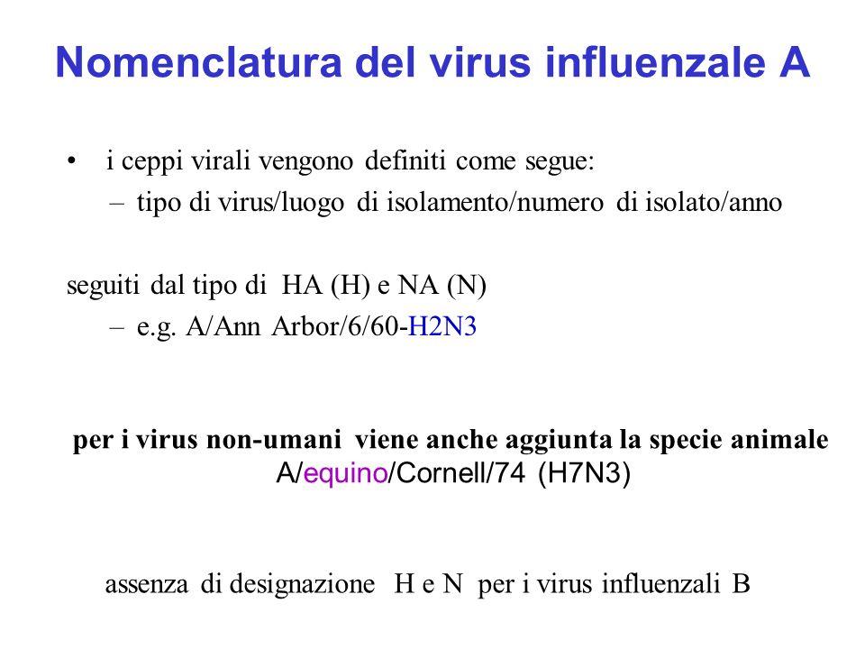 Nomenclatura del virus influenzale A